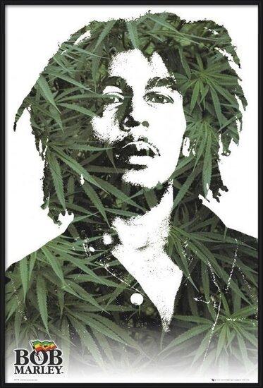 Bob Marley - leaves Poster