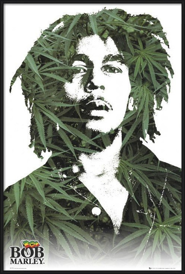 Bob Marley - leaves Poster